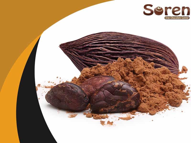 قیمت عمده پودر کاکائو اسنو s9