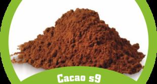 پودر کاکائو ارزان قیمت