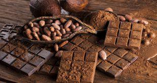 شرکتهای عمده فروش پودر کاکائو