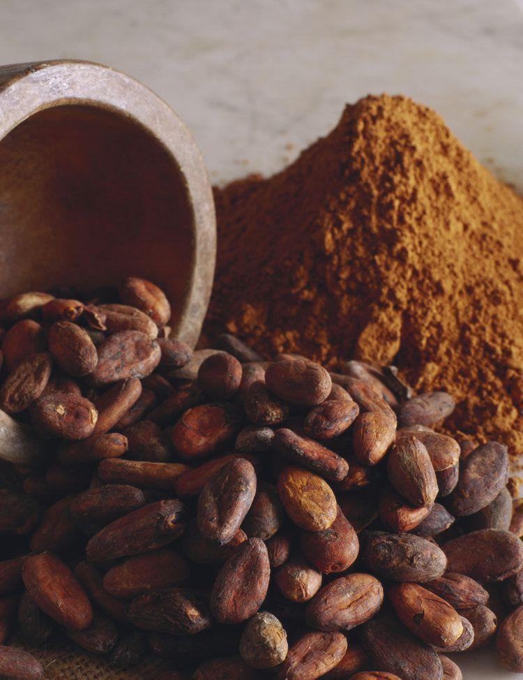 پخش عمده پودر کاکائو Cargill اندونزی با کیفیت