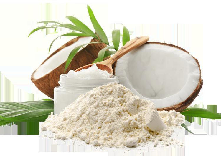 خرید پودر نارگیل Coconut Powder