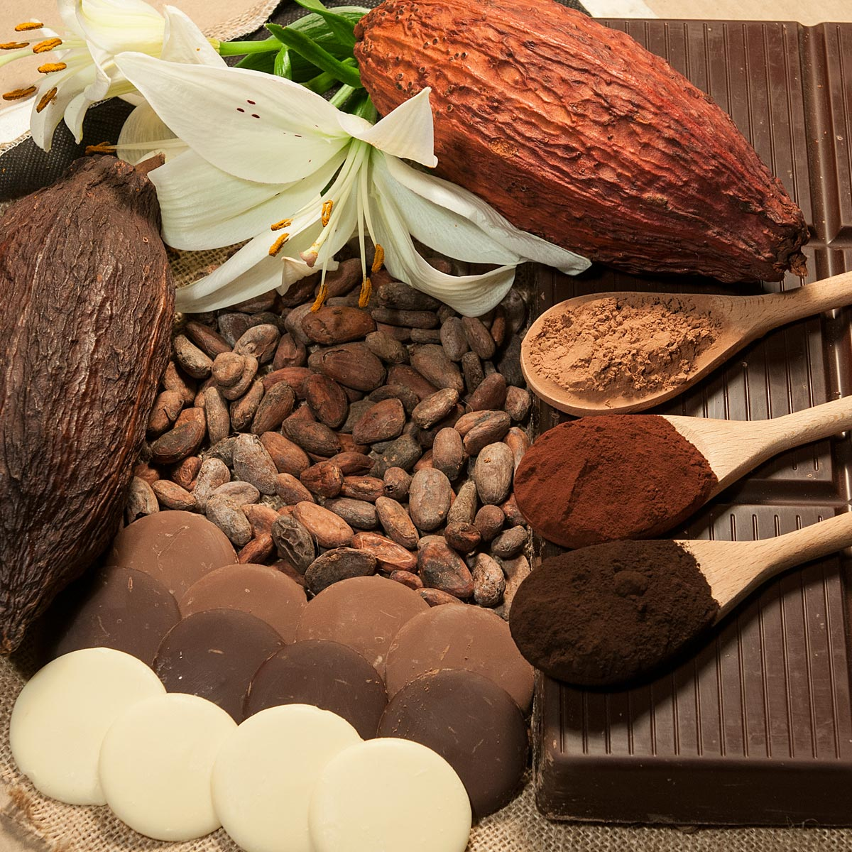 مراکز عرضه کننده پودر کاکائو کارگیل هلند (Cargill cocoa powder)