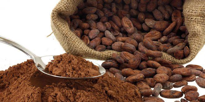 قیمت پودر کاکائو اندونزی