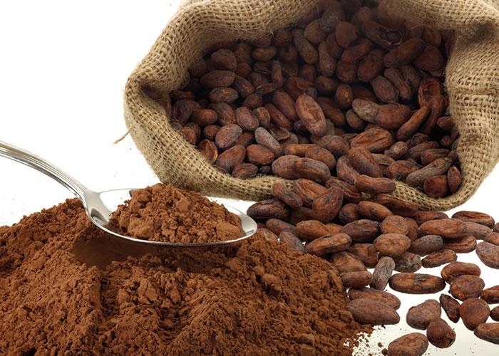 اهمیت استفاده از پودر کاکائوی مرغوب