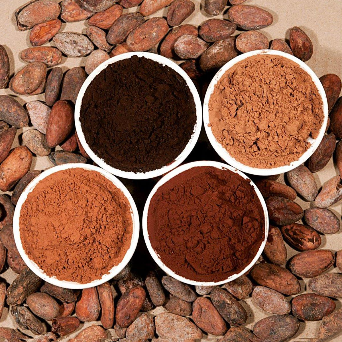 خرید و فروش انواع پودر کاکائو