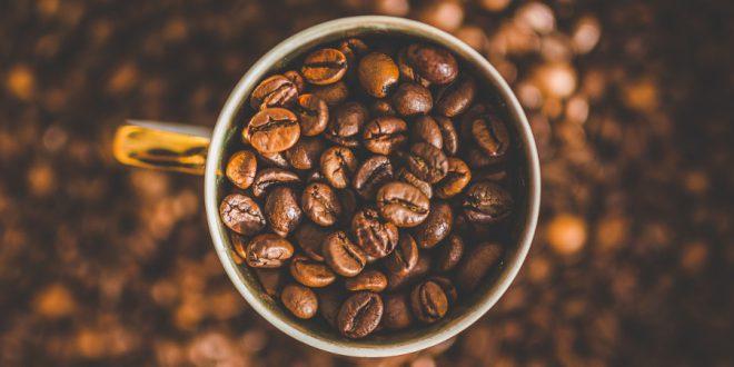 خرید عمده قهوه گلد اکوادور اصلی