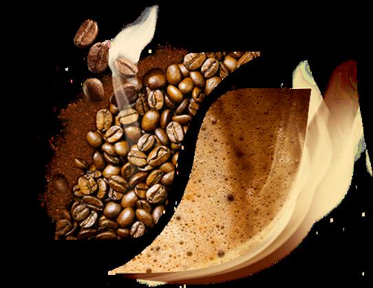 قهوه گلد اکوادور اصلی