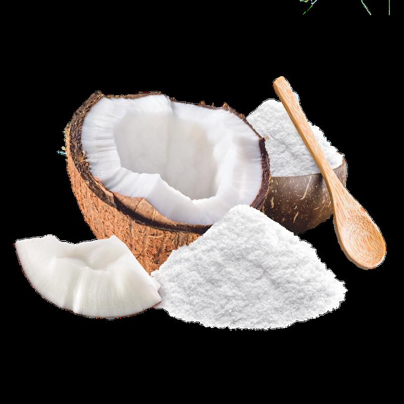 نحوه تولید پودر نارگیل Coconut Powder